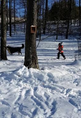 Quinlan and Kyra winter